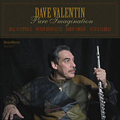 Pure Imagination de Dave Valentin