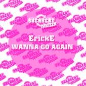 (Wanna)_Go Again by Erick E