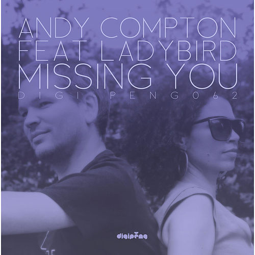 Missing You (feat. Ladybird) by Andy Compton