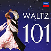 Waltz 101 von Various Artists