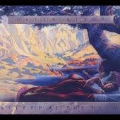 Asleep At the Helm de Peter Alsop