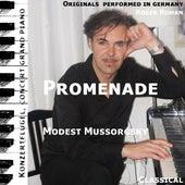 Promenade (feat. Roger Roman) by Modest Mussorgsky