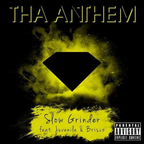 Slow Grinder (feat. Juvenile & Brisco) by Tha Anthem