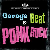 Ace Records Sampler Vol. 3 : Garage, Beat and Punk Rock de Various Artists