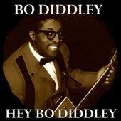 Hey Bo Diddley de Bo Diddley