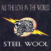 All the Love in the World by Steel Wool