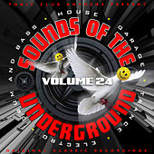Toxic Club Anthems Present - Sounds Of The Underground, Vol. 24 by Various Artists