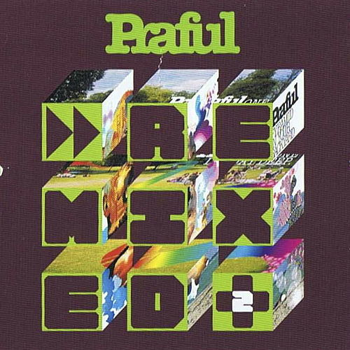 Remixed + 2 by Praful