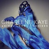 Animal Love - Remixes by Charlene Kaye