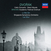 Dvořák: Cello Concerto, Silent Woods / Brahms: Academic Festival Overture von Various Artists