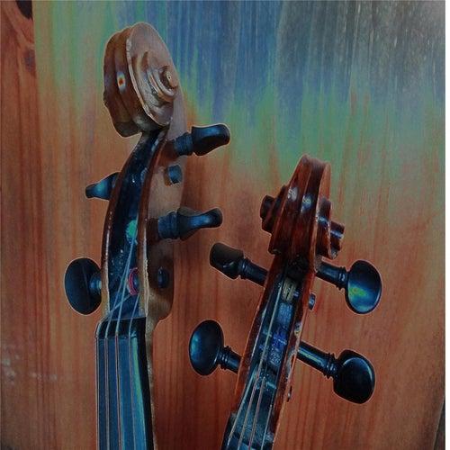 Midnight Dream by Singin' Strings