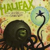 The Inevitability of a Strange World by Halifax