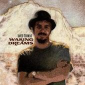 Waking Dreams de David Thomas
