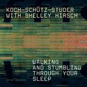 Walking and Stumbling Through Your Sleep by Koch Schütz Studer