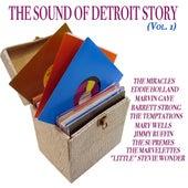 The Sound of Detroit Story, Vol. 1 (100 Songs - Original Recordings) de Various Artists