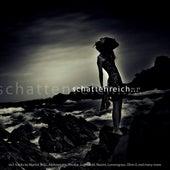 Schattenreich Vol.1 by Various Artists