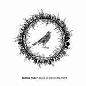 Song 3: Bird On The Water von Marissa Nadler