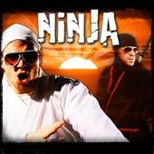 Ninja by Epiclloyd