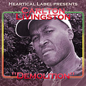 Demolition by Carlton Livingston