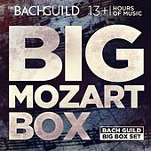Big Mozart Box by Various Artists