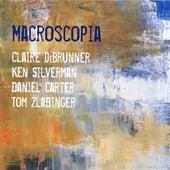 Macroscopia by Daniel Carter
