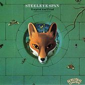 Tempted And Tried by Steeleye Span
