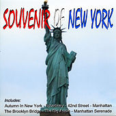 Souvenir Of New York by Various Artists