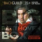 Big Beethoven Box by Various Artists