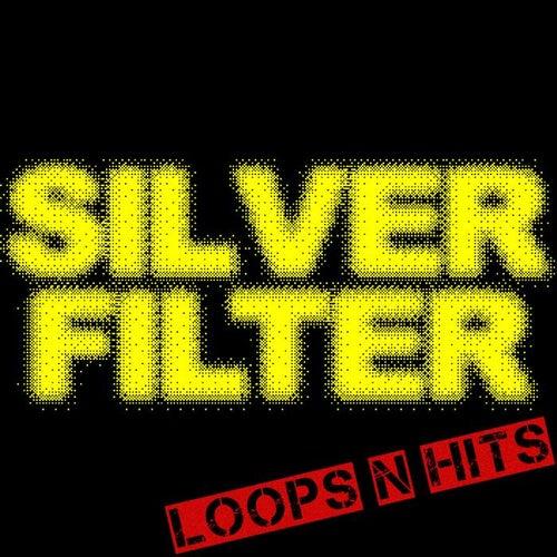 Loops n Hits by Silverfilter