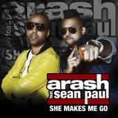 She Makes Me Go by Arash