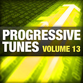 Progressive Tunes, Vol. 13 by Various Artists
