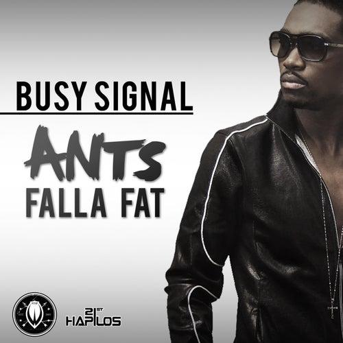 Ants Falla Fat - Single by Busy Signal