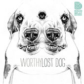 Lost Dog by Worthy