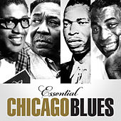 Essential Chicago Blues by Various Artists