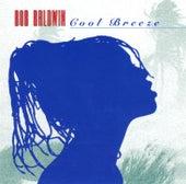 Cool Breeze by Bob Baldwin