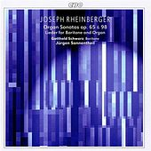 Rheinberger: Organ Sonatas, Op. 65 & 98 - Lieder for Baritone and Organ von Various Artists