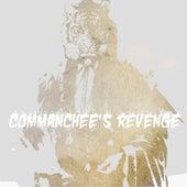 Commanchee's Revenge by Legowelt