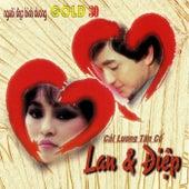 Cai Luong Tan Co Lan & Diep de Various Artists