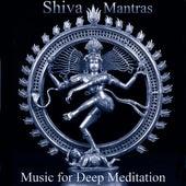 Consciousness and Bliss: Shiva Mantras - Om Namah Shivaya, So Ham and Upanishad Prayer von Music For Meditation