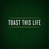 Toast This Life (feat. Andrew Austin) by Grayson Matthews