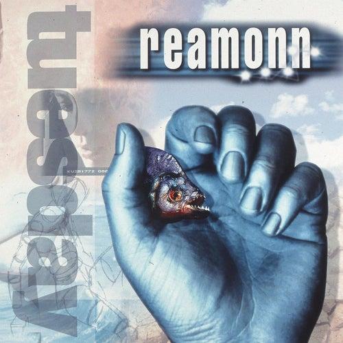 Tuesday by Reamonn