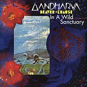 In A Wild Sanctuary/Gardharva by Beaver and Krause