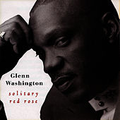 Solitary Red Rose by Glen Washington