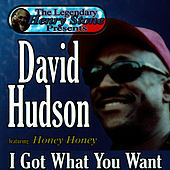 I Got What You Want by David Hudson