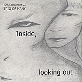 Inside, Looking Out by Ben Schachter