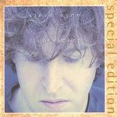 Fluorescent (2002 Reissue) by Steve Wynn