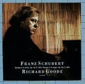 Schubert: Sonata In A Minor Op. 42, D.845 / Sonata In D Major, Op. 53, D. 850 by Richard Goode