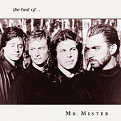 The Best of Mr. Mister by Mr. Mister