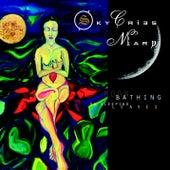 Moon Bathing On Sleeping Leaves by Sky Cries Mary