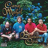 Blueberry Cave by Garaj Mahal